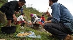 """Bữa """"tiệc"""" trên nương của người Mông ở Bản Phố"""