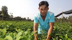 30 tuổi, thành tỷ phú chanh không hạt miền Tây