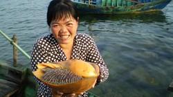Nhọc nhằn nghề săn ốc dưới đáy biển
