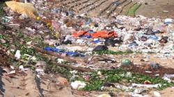 Môi trường ở khu dân cư ven biển ô nhiễm nặng