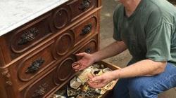 """Mua tủ gỗ cũ tìm thấy """"kho báu"""" hơn 300 triệu đồng"""