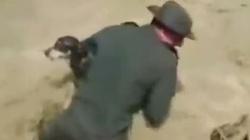 Video: Cảnh sát Colombia hô hấp nhân tạo cho chó
