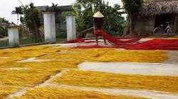 Chùm ảnh: Hồn quê nơi làng chiếu đất Quảng