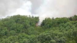 Rừng phòng hộ ở Thanh Hóa lại cháy