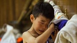 Bên trong các câu lạc bộ sumo cho trẻ em ở Nhật Bản