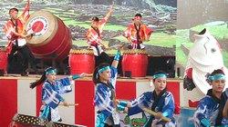 Lễ hội Bonsai Châu Á – Thái Bình Dương: Hội tụ nhiều đoàn khách quốc tế