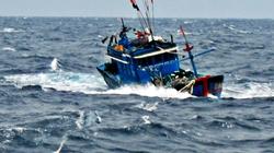 Tàu cá chết máy, 38 ngư dân trôi dạt trên biển 3 ngày
