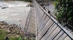 Đứt cáp cầu treo,  người và bò bị hất xuống suối