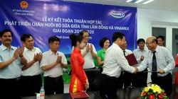 Vinamilk sẽ tiêu thụ 90% lượng sữa bò tươi ở Lâm Đồng
