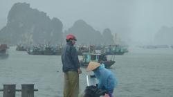 Bão số 1 áp sát, Quảng Ninh mưa lớn, gió giật cấp 9