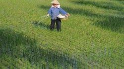 Bế mạc kỳ họp thứ 9 Quốc hội khóa XIII: Chờ nền nông nghiệp chuyển biến