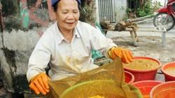 Chế biến tinh bột nghệ, nghề mới cho thu nhập khá ở Quỳnh Hậu