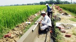 Quảng Nam đầu tư 742 tỷ đồng làm thủy lợi