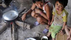 58 tỉnh, thành đã có kết quả khảo sát hộ nghèo