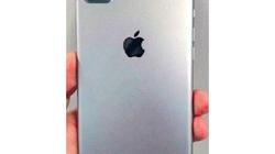 iPhone 7 Pro lộ ảnh dùng camera kép