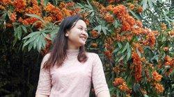 Ngắm hoa Vàng Anh rực rỡ trên quê hương Quảng Bình