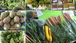 """Hàng trăm thực phẩm sạch tại """"Phiên chợ xanh tử tế"""""""