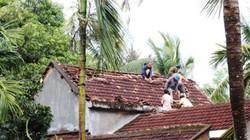 Bình Định: Hàng trăm nhà dân, chuồng heo tốc mái vì lốc xoáy