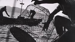 Hành trình lật mặt kẻ khiến cá chết hàng loạt (2)