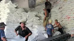 Giá gạo xuất khẩu tăng do... ảo tưởng!