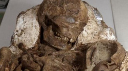 Phát hiện hóa thạch mẹ ôm con 4.800 năm ở Đài Loan