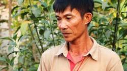 VKS: Chủ đất quán Xin Chào không phạm tội
