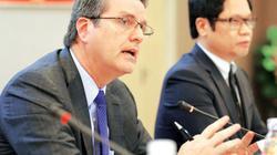 Tổng giám đốc WTO: Con ngỗng ngồi yên sẽ bị bắt