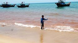 Vệt nước đỏ ở Quảng Bình: Chưa khẳng định là thủy triều đỏ