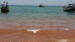 Clip: Vệt nước biển đỏ dài 1,5km tại Quảng Bình