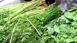 Cách chọn rau không hóa chất, không dùng chổi quét