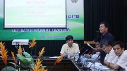 Hỗ trợ nông dân tham gia chuỗi giá trị nông sản