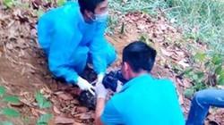 Phát hiện thi thể trơ xương trong khu rừng ven đèo