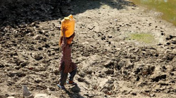Ấn Độ nóng lên đến 51 độ, cao nhất lịch sử khí tượng