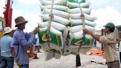 Thái Lan xả kho gạo 11,4 triệu tấn: Chiêu trò trong kinh doanh?
