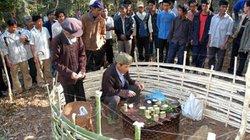 Người dân Mường Tè giữ rừng như báu vật