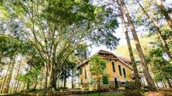 Khuôn viên như vườn thượng uyển trong Dinh Bảo Đại