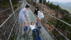Du khách khóc thét khi đi cầu kính trong suốt ở Trung Quốc