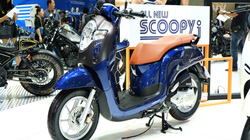 Soi Honda Scoopy i hoàn toàn mới giá 31,8 triệu đồng