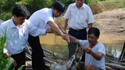 Nghèo như khuyến nông viên: Gửi trăn trở đến Bộ trưởng