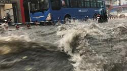 """Mưa trái mùa """"khủng"""" ở SG: Khuyến cáo tránh tiếp xúc nước mưa"""