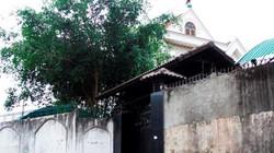 Phó ban Nội chính thừa nhận xây biệt thự trên đất nông nghiệp