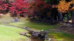 Thiên đường từ sự phản bội đẫm máu ở Nhật Bản