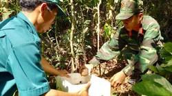Quảng Ngãi: Kiểm tra và xử lý bom, mìn tại núi Khỉ