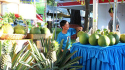 Hàng chục nghìn người Sài Gòn mua nông sản của nông dân xuất sắc