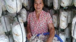 Vực dậy nghề trồng nấm giúp người lành có việc, người khuyết tật có thu nhập