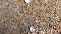 Mưa đá bất ngờ trút xối xả xuống Đồng Nai, Bình Dương