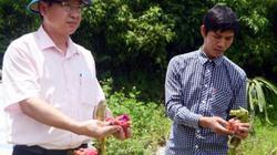 """Quảng Ninh: """"Hạ nhiệt"""" gần 700 vụ việc """"nóng"""""""