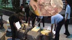 Chặn 450kg nầm Trung Quốc không rõ nguồn gốc đang tuồn vào nội địa
