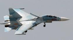 Việt Nam tự nâng cấp thành công tên lửa Kh-29T/L