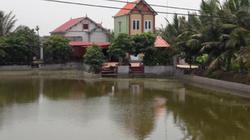 Hải Phòng: Xây nhà trái phép, xóa sổ ao làng